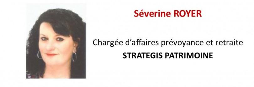 Séverine Royer, Strategis Patrimoine