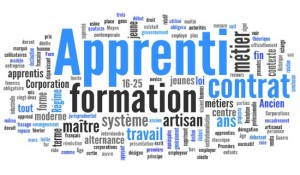 apprenti_apprentissage_formation_professionnelle